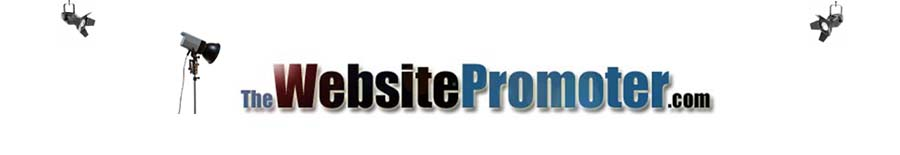 professional website promoter